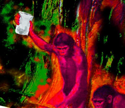 Caveman BAG copy